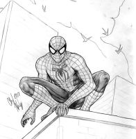 Spidey closeup by dymira128