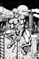 Old Spider-Man (ink) by rhixart