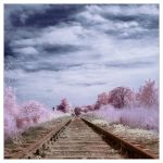Last Train To Paradise by IngoSchobert