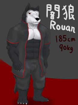 Comission:Rouan by FIREWOLF2709