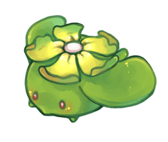 Skiploom by CookieHana