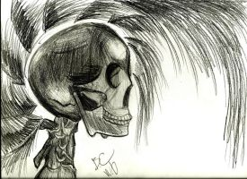 i love this skully!!! by weerdboy118