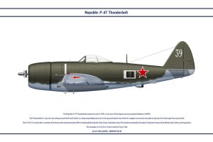 P-47 USSR 1 by WS-Clave