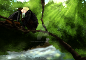 THG: Above the Creek by BookFann