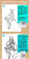 CSH Work Process by scificat