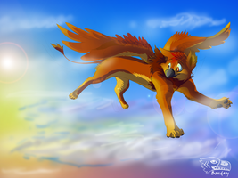 Airborn by Bonday