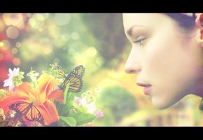 -Butterfly Dreams- by enixeffex