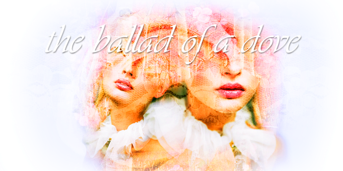 Header: Ballad of a Dove by BelovedBastet
