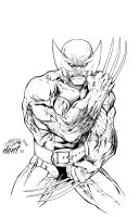 Wolvie Inked by DontBornInInk