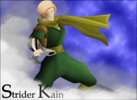 Strider Kain Colors by genryusai
