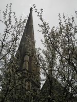 Spires Through Winter Blossoms by Phantom-Nightwing
