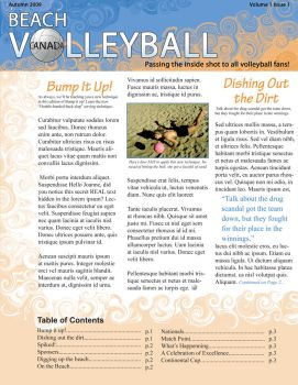 Beach Volleyball Newsletter by Sky-Waves