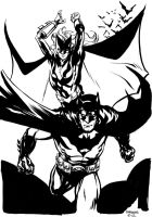 Batman and Batwoman by stokesbook