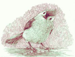 Tufted Titmouse on pencil by 24hourstobeFree