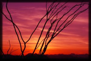 Arizona Sunset 2 by JCCJ756