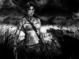 Tomb Raider by Lulztroll87