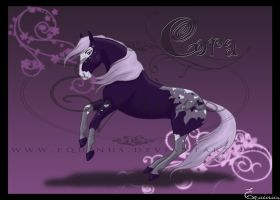 Cora by Equinus