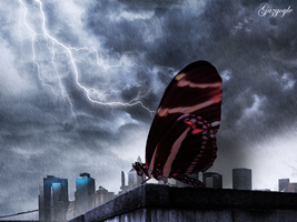 The Lost Butterfly by Gazgoyle