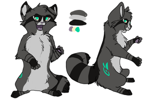 Raccoon by Whitefeathur