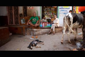 Streetlife of India 001 by Solarstones