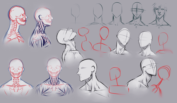 Drawing necks by moni158