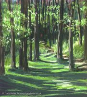Into the Woods by Tracy Butler Art by tracybutlerart