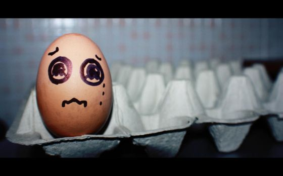 Lonely Egg by AinsleyFerin