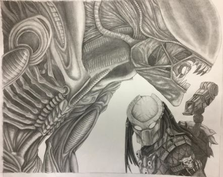 Alien vs Predator by nitrapalo