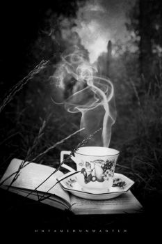 Secret Pathways and Tea Time by UntamedUnwanted