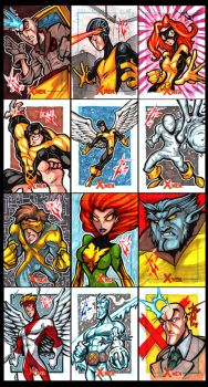 X-Men Archives the First Class by skulljammer