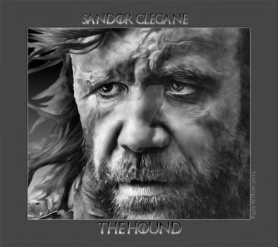 Sandor (The Hound) Clegane by admin-fadewillow