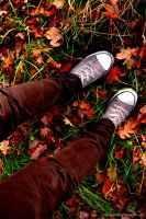 Fall by Himmelsfalter
