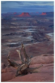 Canyonlands by Nate-Zeman