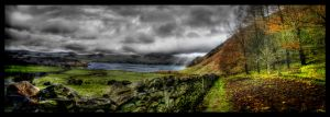 Ennerdale path by sdnalednas