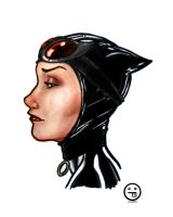 Catwoman Copics 2 by AndrewKwan