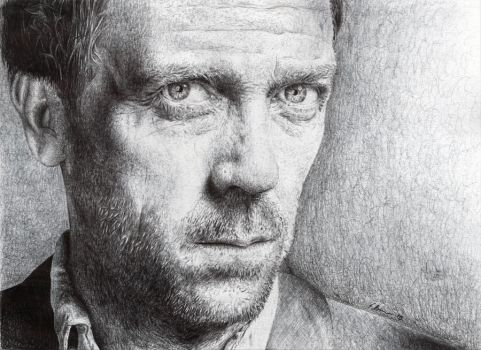 Dr. House - Biro by SamBrownArt