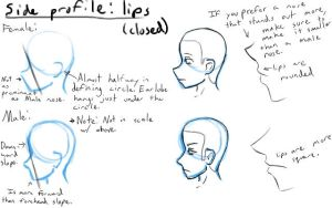 Side Profile: Lips and Nose by LearntoDrawAnime