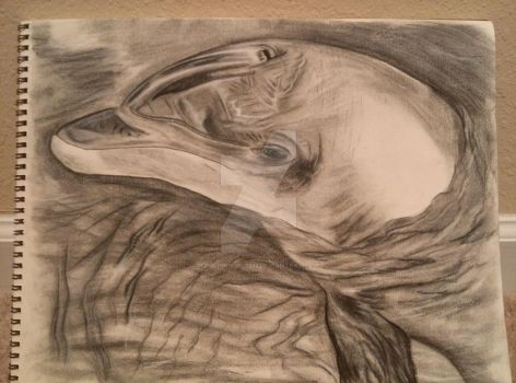 Alvin the Dolphin by Dolphingrl1331