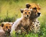 Proud Mom by DonsDigitalCreations