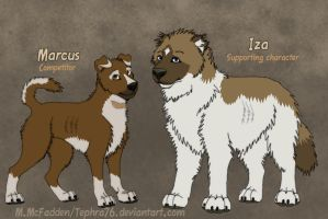 Marcus- Chernobyl Curs OCT by Tephra76