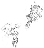 perfect sonic......ssss XD by Trakker