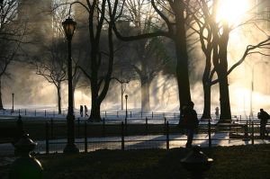 central park by desmes