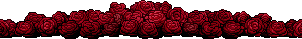 Red Roses Divider by ThisPoisonedOne