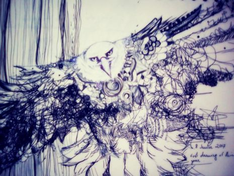 Bird Drawing by lilibloom24601