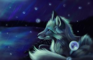 Northern Lights by Followthepaws