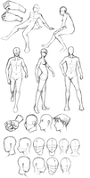 Poses-heads-hands by keishajl