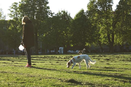 Dog owners by saraprpic