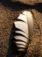 Treasures within the sand by ToryHartley