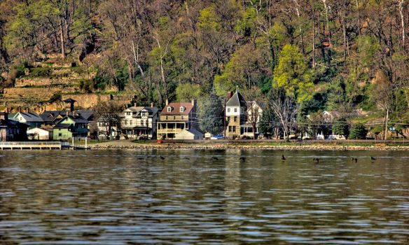 Port Deposit w birds by Schwingding