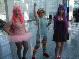 AX2011 - D4: 584 by ARp-Photography